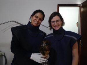 As médicas veterinárias Priscila, da CVI, e Fernanda Carpintero, da Aiuká